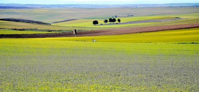 Farmers… and guardians of Europe's last biodiversity